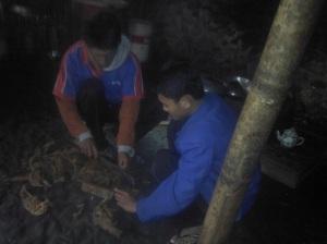praktik pembuatan pestisida dari limbah tembakau
